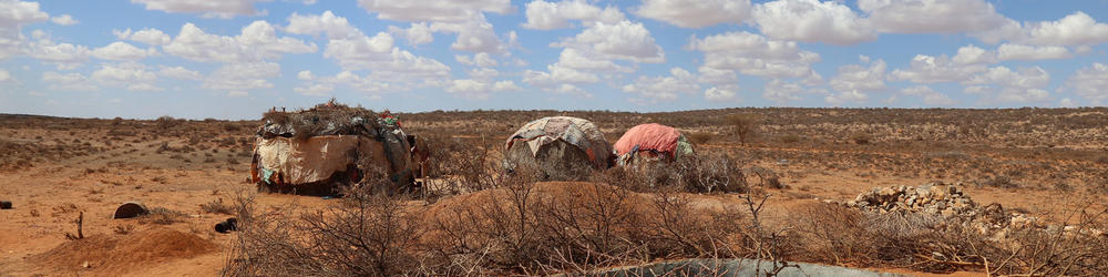 Hunger in Afrika - Vertrocknete Landschaft in Somalia