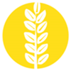 Icon Folgen des Klimawandels