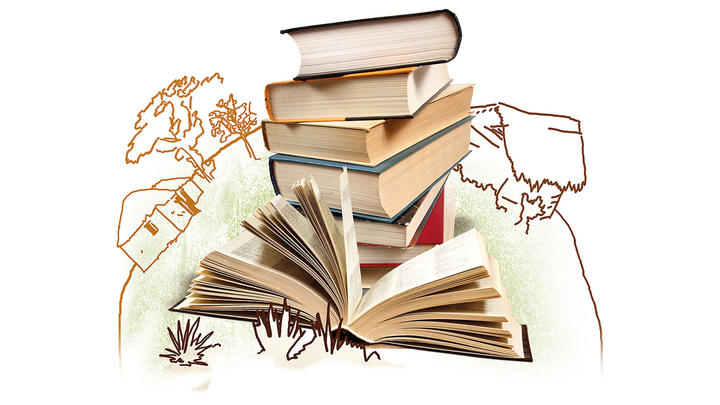 Bibliothek-Buchset